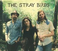 stray birds2