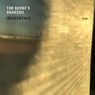 Snakeoil-Incidentals